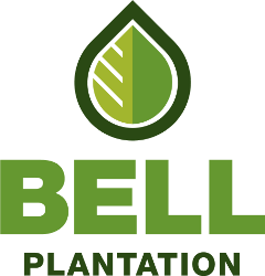 Bell Plantation: Lowest Prices at Muscle & Strength