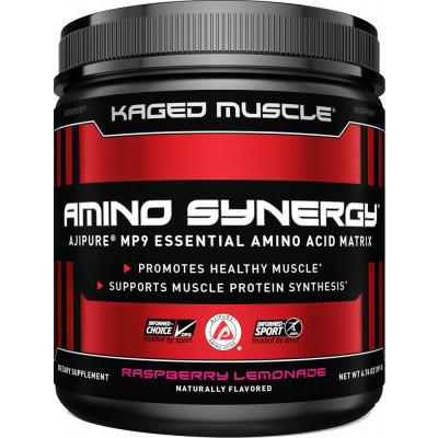 Amino Synergy