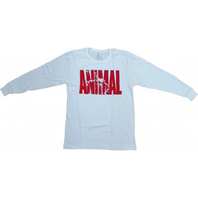 Animal Thermal