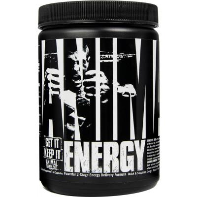 Animal Energy