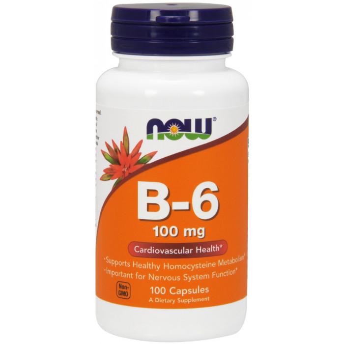 NOW Foods Vitamin B-6 100mg