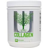 Universal Nutrition Collagen