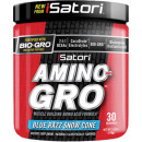 iSatori AMINO-GRO 30 Servings Blue Razz Snow Cone