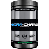 Kaged Muscle Hydra-Charge 60 Servings Apple Limeade