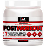 AML Postworkout 20 Servings Mixed Berry