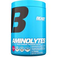 Beast Aminolytes, 30 Servings