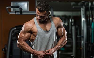 Supplements For Building Muscle At Muscle Strength