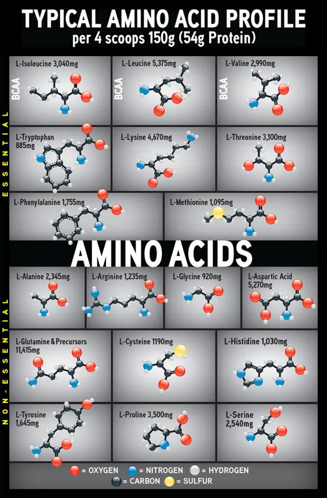 CytoSport CytoGainer Amino Acids
