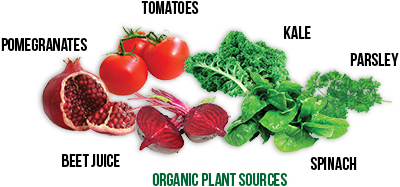 SAN Green Supreme Fusion Organic Veggies