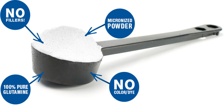 Glutamine Scoop Specs