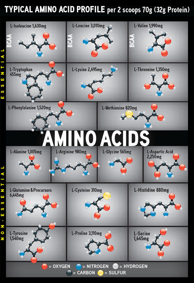 CytoSport Muscle Milk Amino Acids