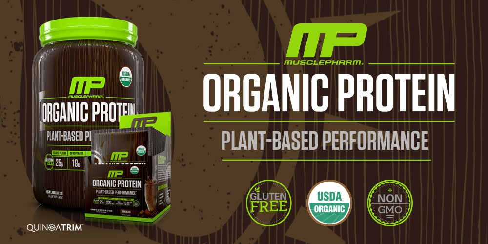 organic protein powder hero banner