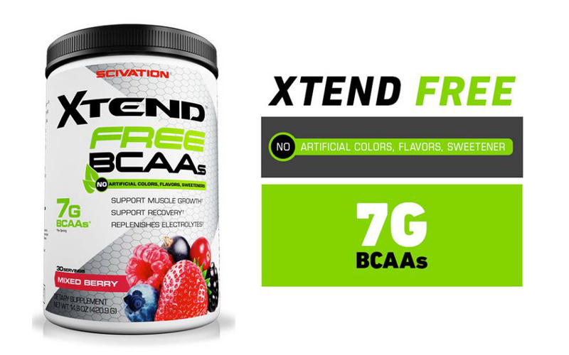 XTend Free Banner